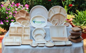Eco friendly disposables, Areca Leaf products