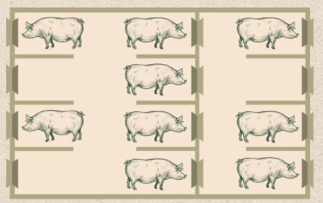 loose sow housing
