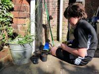Planting mid-May