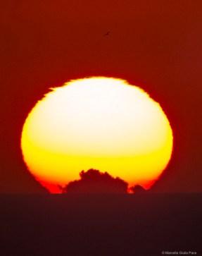 83 Sunset 22 April 2017 Marina di Ragusa, Sicily