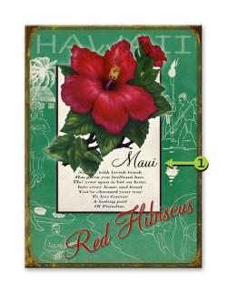Choose Your Favorite Hawaiian Flower