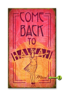 Come Back to Hawaii