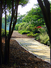 down-the-garden-path