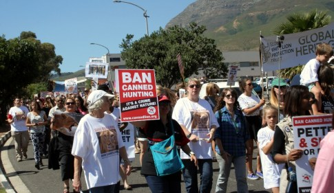Ban canned lion hunting March 1