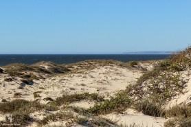 Dunes at Rocherpan
