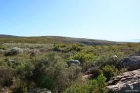 Oukraal plateau Gamkaberg