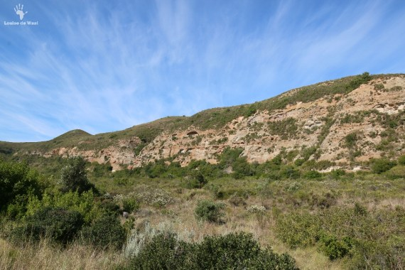 Gondwana Game Reserve, Mosselbay