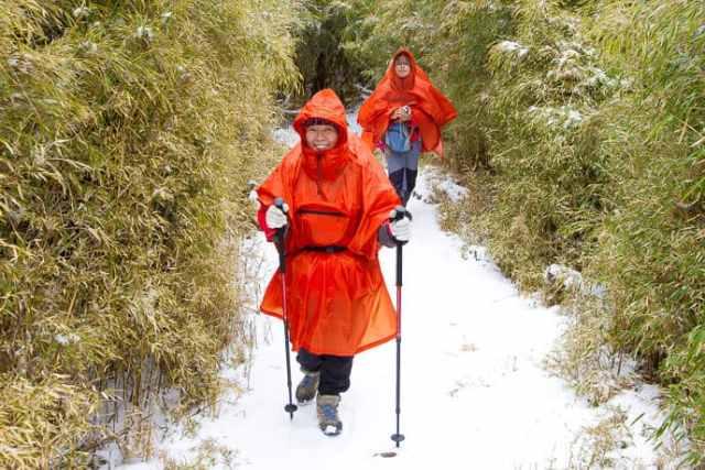 See snow in Taiwan in Hehuanshan or Snow Mountain