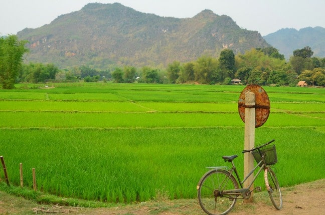 Cycling past Rice Paddies in Vietnam. Photo Credit Global Water Forum