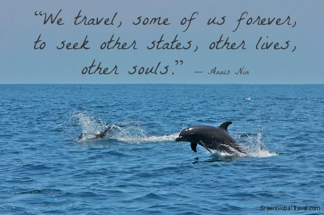 Inspirational_Travel_Quotes_Anaïs_Nin_Quote
