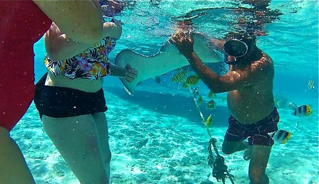 Feeding Rays in Bora Bora, Tahiti
