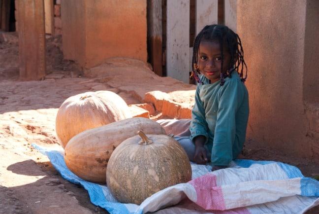 Madagascar King Julien Pumpkin Girl