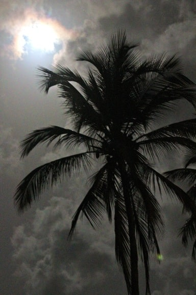 Rosalie_Bay_Resort_Dominica_Full_Moon