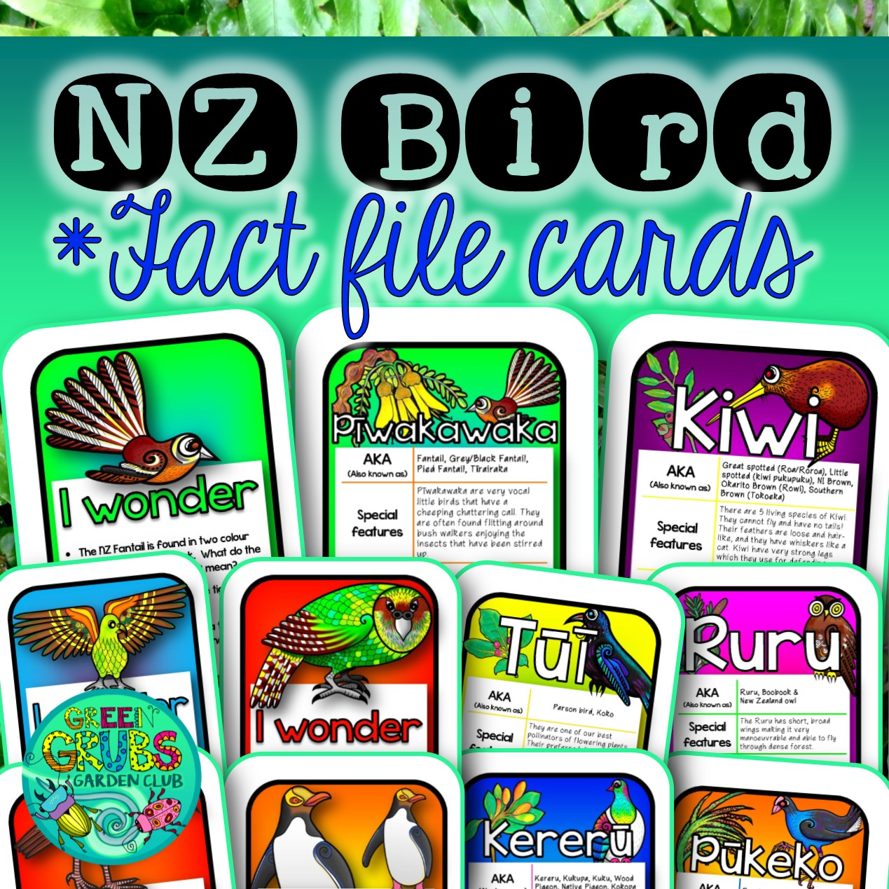 New Zealand Native Birds Fact Files Amp Task Cards