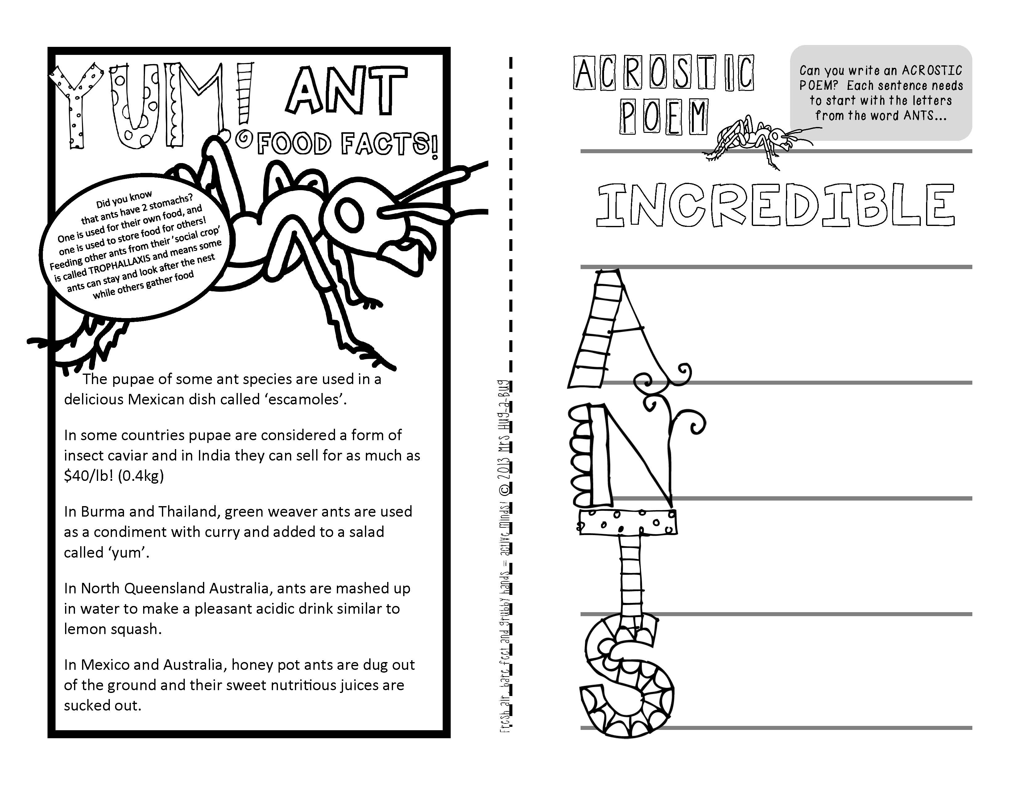 Ants A Booklet Of Activities Celebrating The Life Cycle