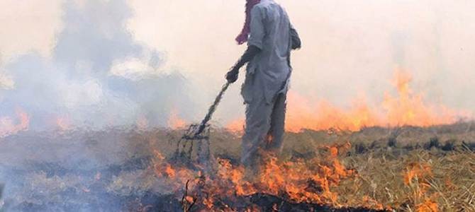Burning crop residues is a major contributor to air pollution in South Asia