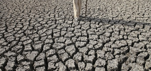 A farmer surveys a dry reservoir near Vidharbha in Maharashtra, India.