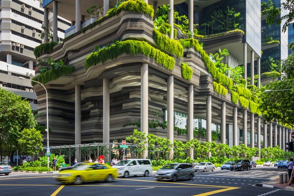 The Parkroyal on Pickering Hotel in Singapore is shrouded in forested terraces and sky gardens that encourage local insects and birds. Ariyaphol Jiwalak/Shutterstock