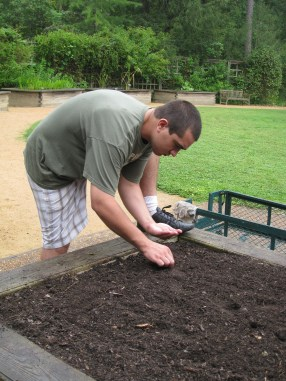 Volunteer planting white Radish seeds in Horticulture Therapy