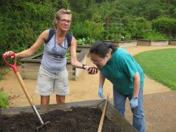 Therapeutic Gardening Rocks the Heart and Soul