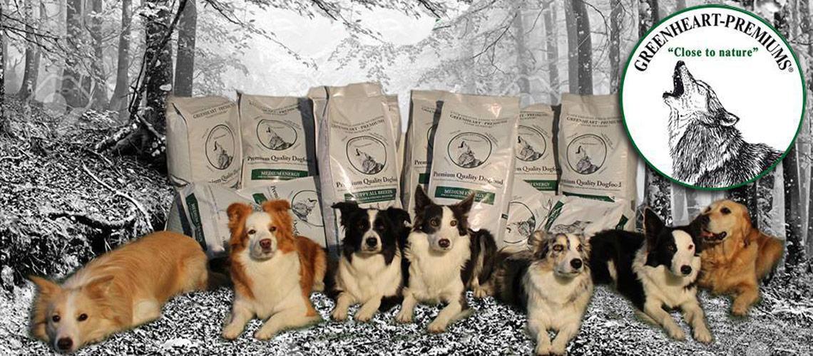 Dieta baja en fosforo para perros