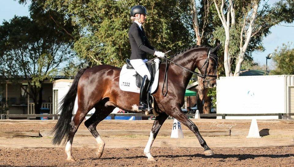Aiyana Levin greenhills equine