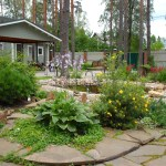 Ландшафтный дизайн. Птицы в вашем саду.