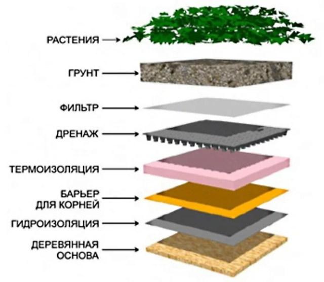 Озеленение на крыше.  Зеленый ковер
