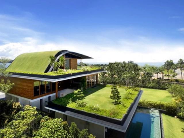 Озеленение на крыше - GreenhouseBay.ru