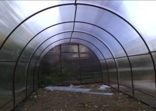 greenhousebay.ru_галерея