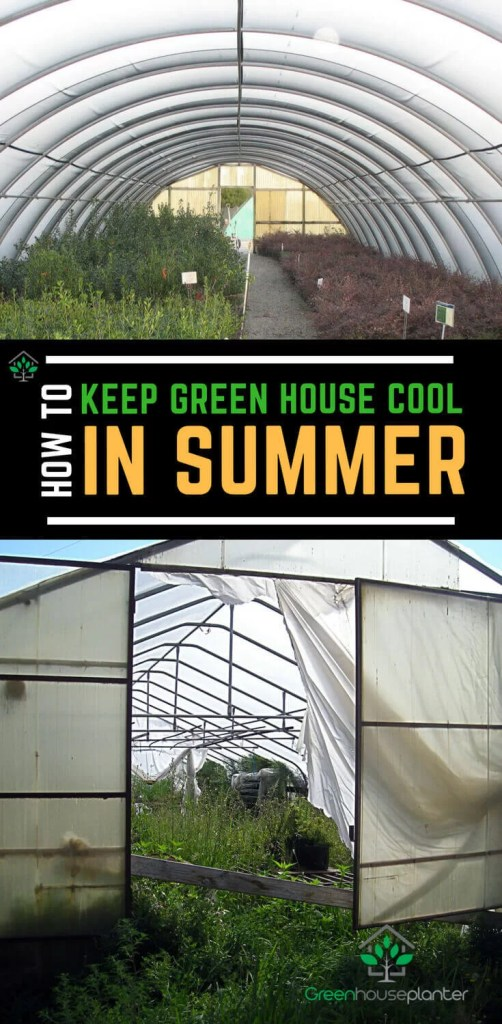 Admirable How To Keep A Greenhouse Cool In The Desert Or Hot Summer Home Interior And Landscaping Dextoversignezvosmurscom