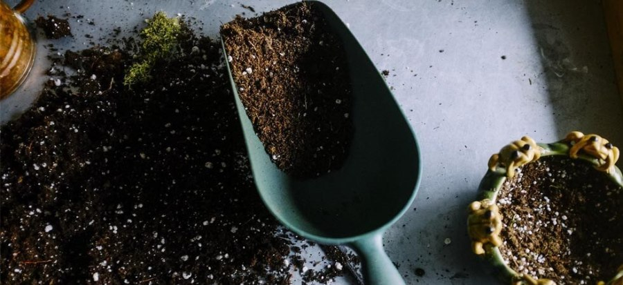 You should provide perfect soil for the plants which you are using in your greenhouse to make the plants grow faster and free from pests and diseases