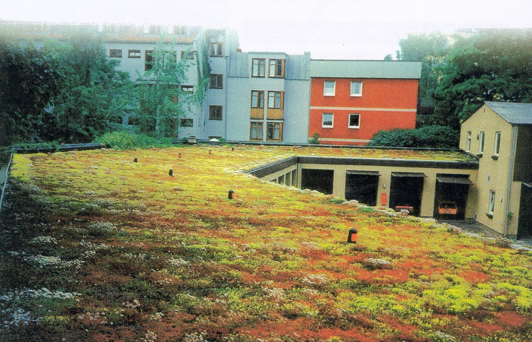 Extensive green roof over parking garage in Germany- Xeroflor