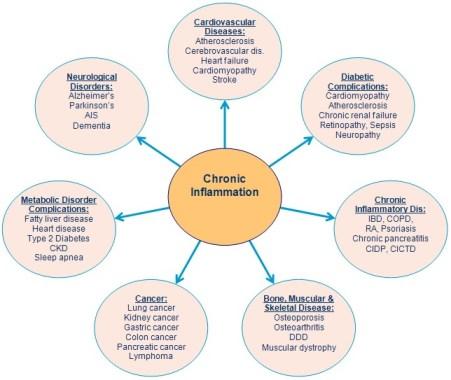 Chronic Inflammation - Inflammatory Disease