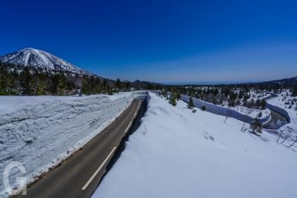睡蓮沼付近の雪の回廊