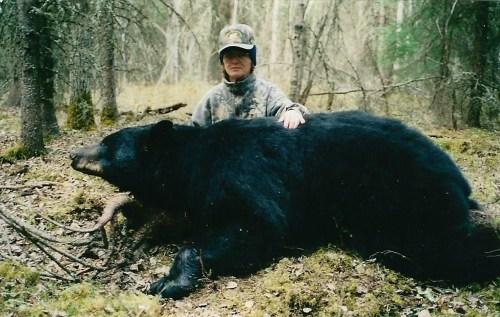 BearPage-02