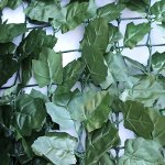 ALEKO-94-X-39-Faux-Ivy-Privacy-Artificial-Fence-Screen-Hedge-Wall-or-Fencing-Outdoor-Decoration-Lot-of-4-0-1