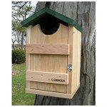 Songbird-Essentials-SE519-Screech-Owl-House-0