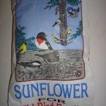 Sunflower-Seeds-Shelled-Bird-Seed-Free-Shipping-0-1