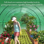 BenefitUSA-Portable-Greenhouse-246-X10-X-7-Walk-In-Outdoor-Plant-Gardening-Hot-Green-House-with-ABS-Snap-Clamp-0-2