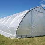 DELTA-Canopies-Large-Walk-in-Green-Graden-House-Commercial-Grade-40×20-Clear-Greenhouse-0-1