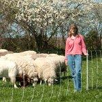 Premier-ElectroStop-Goat-Sheep-Electric-Fence-42H-x-164-L-Single-Spike-White-Premier-Top-Seller-0-1
