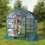 SpringHouse-Greenhouse-with-green-frame-and-clear-body-with-UV-protection-for-longevity-0-0