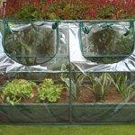 Zenport-SH3212A-BTP-10PK-Garden-Raised-Bed-Cold-Frame-Greenhouse-Cloche44-Box-of-10-0