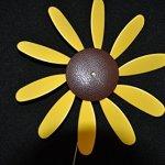 Beloit-Plastics-LLC-Classic-Spinning-Daisy-x6-case-SUNFLOWER-12-inch-dia-0-2