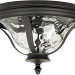 Craftmade-Z6017-92-Two-Light-Flushmount-0