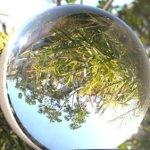 Optically-Clear-Crystal-Ball-110-mm-0