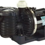 Pentair-Sta-Rite-P6RA6YF-206L-Max-E-Pro-Energy-Efficient-Dual-Low-Speed-Up-Rated-Pool-and-Spa-Pump-1-12-HP-230-Volt-0
