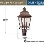 Sea-Gull-Lighting-8262-44-Chatham-Two-Light-Outdoor-Post-Lantern-with-Clear-Seeded-Glass-Panels-Weathered-Copper-Finish-0-0