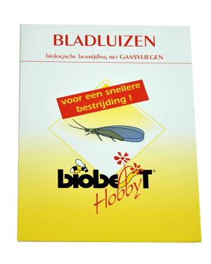 bladluizen-gaasvliegen